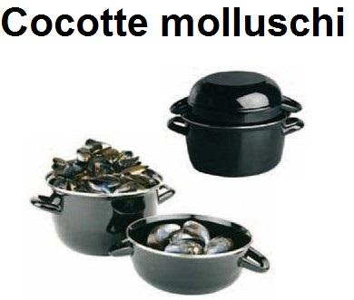 COCOTTE x MOLLUSCHI | Novalberghiera