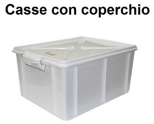 BOX CON COPERCHIO